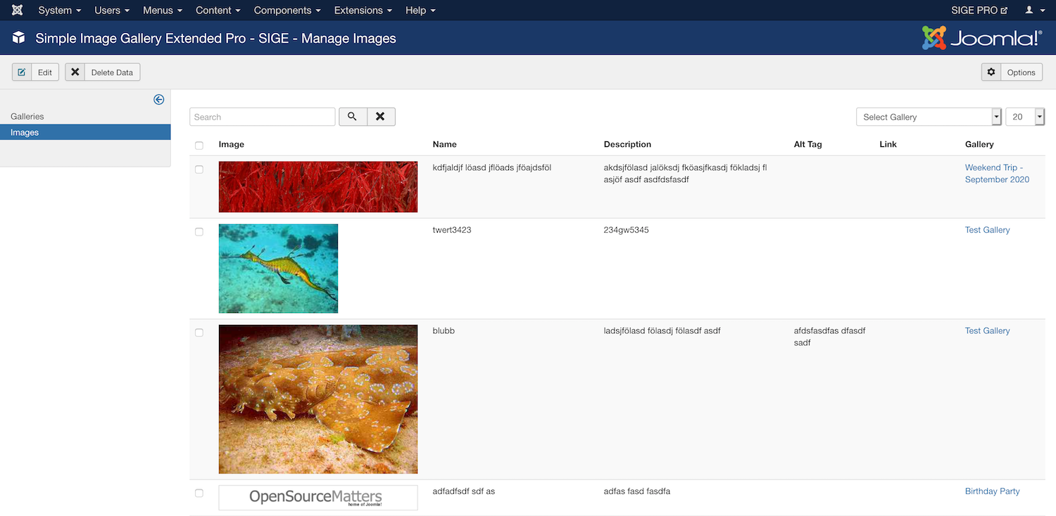 Simple Image Gallery Extended - Component - Images
